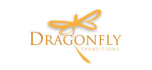 dragonfly transitions